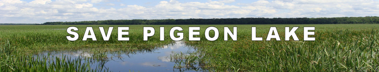 Save Pigeon Lake – Ontario